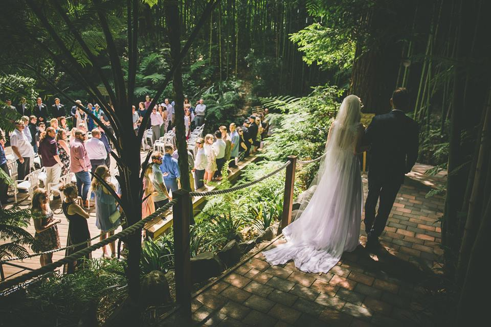 Guests+watching+the+bride+and+groom+walk+along+path+holding+hands
